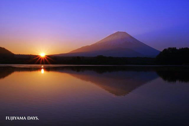 fuji sun rize